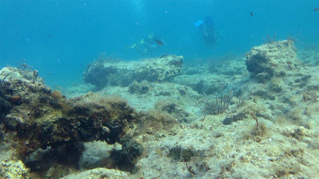 Shore Dives